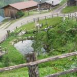 Holzalm auf dem Weg der 4-Almen Wanderung